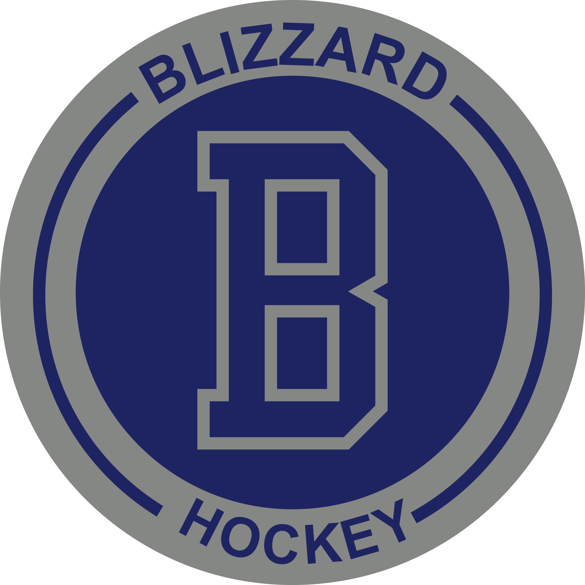Newfoundland Blizzards Professional Hockey Instruction